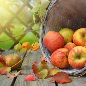 apple-1776744_640