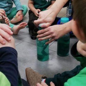 Flaschen Grün